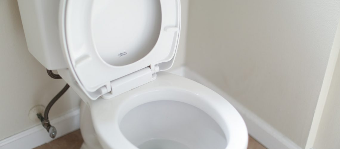 Why Is My Toilet Handle Loose or Not Working?